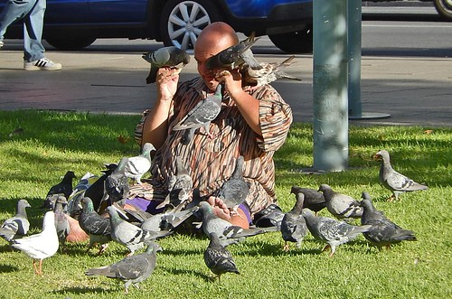 Surrounded by Pigeons | by mikecogh