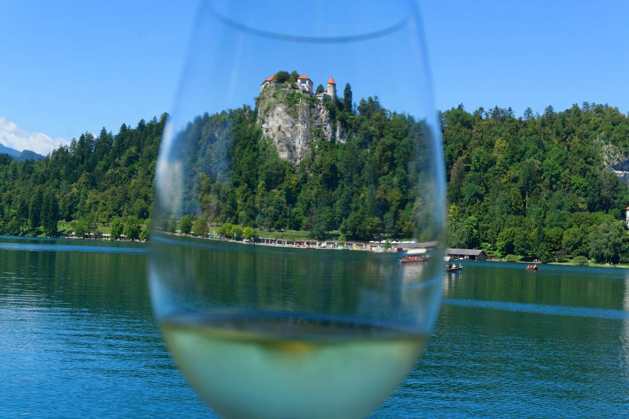 Wine Spotting on Lake Bled