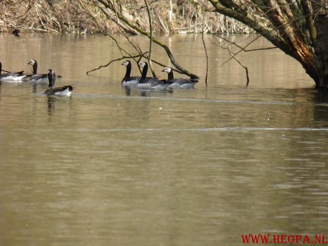 Castricum 15-04-2012 26 Km (63)