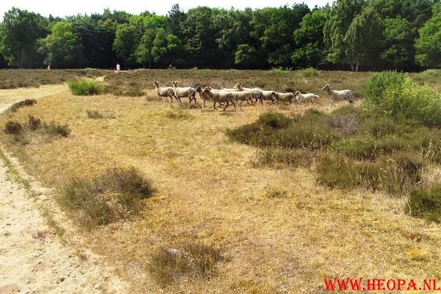 3 juli 2010  'T Gooi 40 Km (19)
