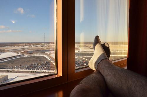 window view legs hairylegs 2015