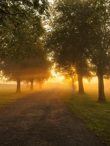 light mist misty sunrise landscape dawn nikon mood warwickshire d610 bidfordonavon dawnmist jactoll nikonfxshowcase