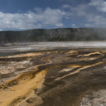 Biscuit Basin extremophiles