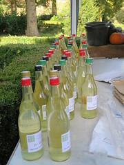 Heritage Fruit Juice 2016. IMG_0277