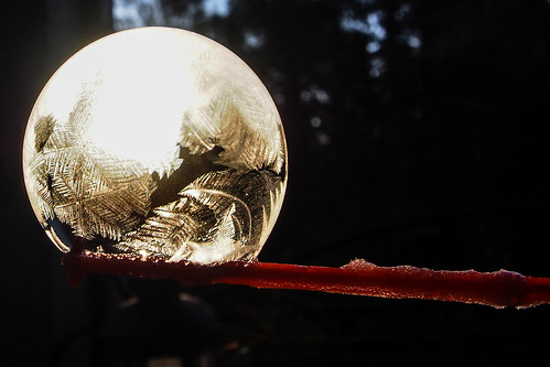 atlanta winter usa detail macro texture ice closeup sunrise georgia season frozen crystals seasons unitedstates south seasonal roswell bubbles olympus southern bubble touchscreen soapbubble mirrorless pencamera microfourthirds stgrundy epl5