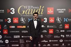 Catifa vermella VII Premis Gaudí (30)