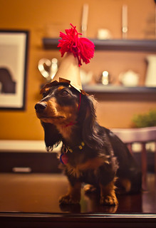 Freyja_1st_Birthday - 21.jpg | by Jacob Vann