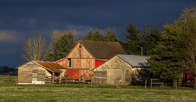 Farm @ Sunset