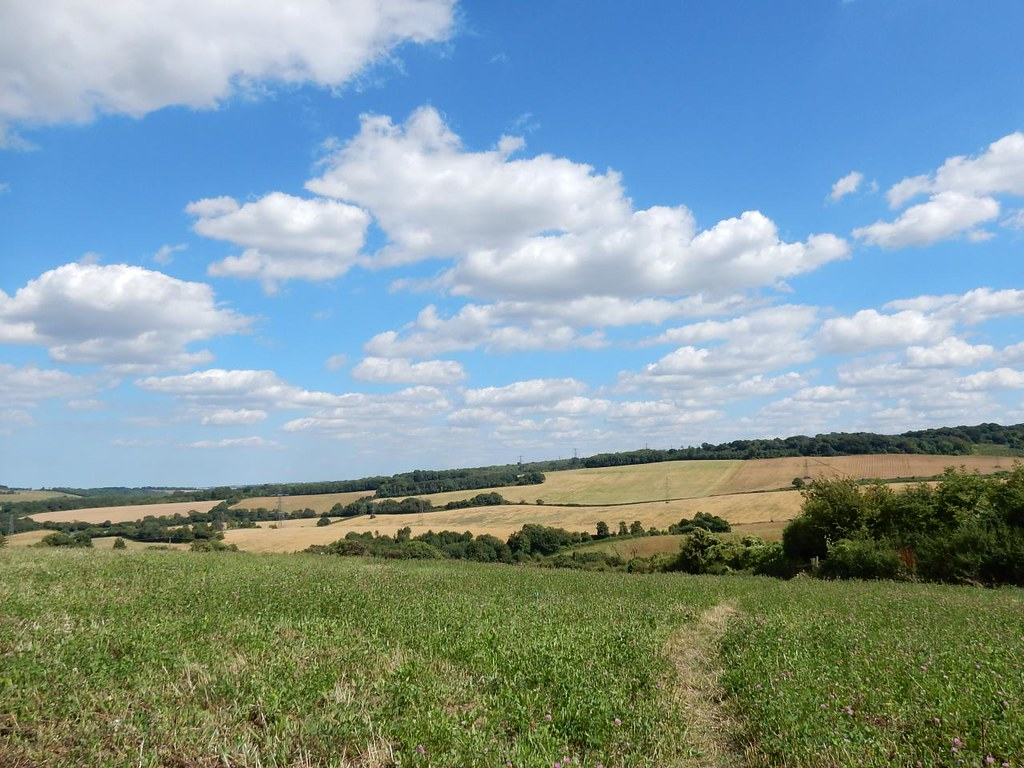 View Cuxton to Halling