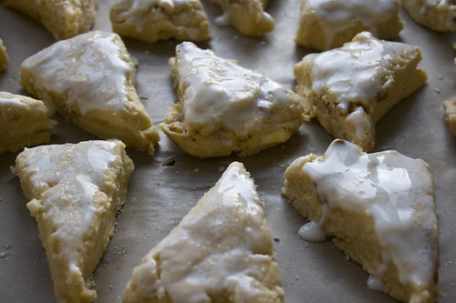 Maple & walnut buttermilk scones