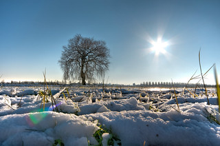 Snowy landscape in Hendrik Ido Ambacht (The Netherlands) in HDR
