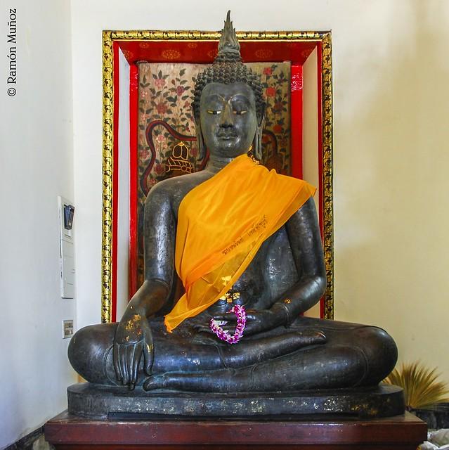 DSC1471 Buda en el Templo Wat Pho, Bangkok, Thailandia