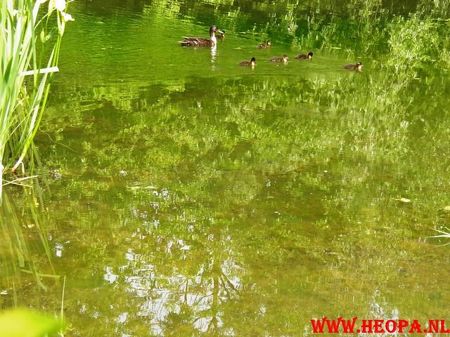 05-05-2011        Dordrecht         25 Km (78)