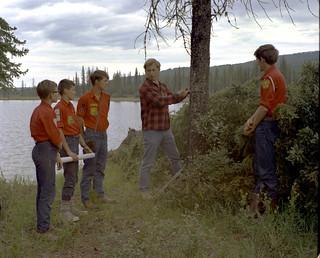 Measuring a tree, Blue Lake, Alberta