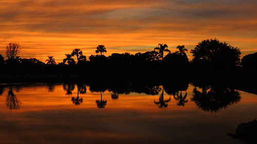 pink blue trees sunset red wallpaper orange sun lake color reflection water weather silhouette yellow clouds landscape evening pond oak nikon flickr sundown florida dusk palm tropical coolpix sarasota cortez bradenton p510 mullhaupt cloudsstormssunsetssunrises jimmullhaupt