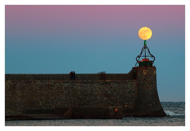 Collioure in the moon
