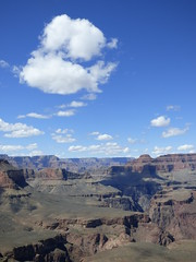 Grand Canyon - South Kaibab Trail, at Skeleton Point, looking west (2)