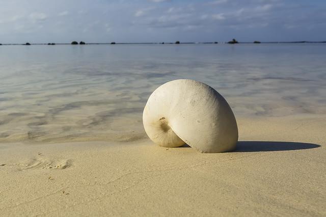 Avarua beach, a 17.081 Kms de distancia.