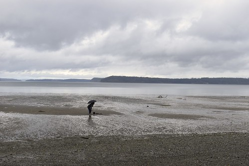 olynpiawashington tolmiestatepark clouds drizzle beach clams d5600