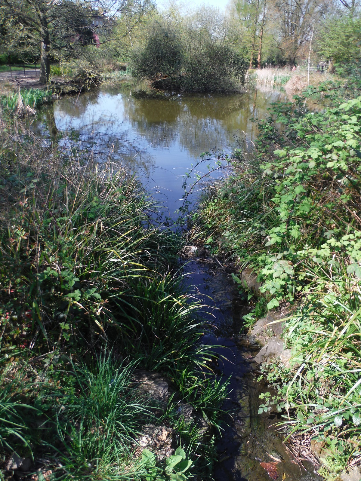 Effra Tributary, Brockwell Park SWC Short Walk 39 - Brockwell Park (Herne Hill Circular or to Brixton)