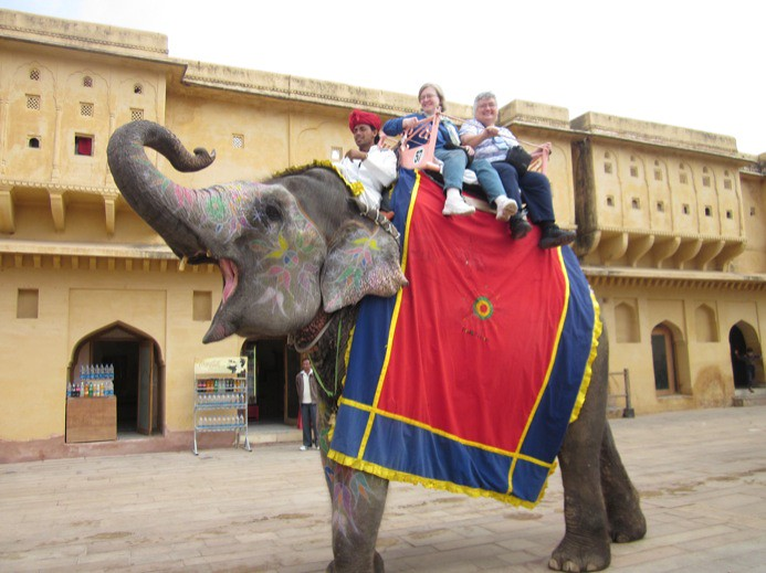 A Elephant Ride at Amber Fort jaipur