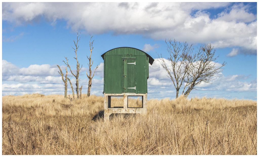 Observation Hut, Tentsmuir-7
