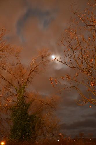 trees sky moon night clouds virginia nikon outdoor va roanokeva yabbadabbadoo d7000 tamron18270 nikontamron nikond7000 tamron18270mmf3563diiivcpzd
