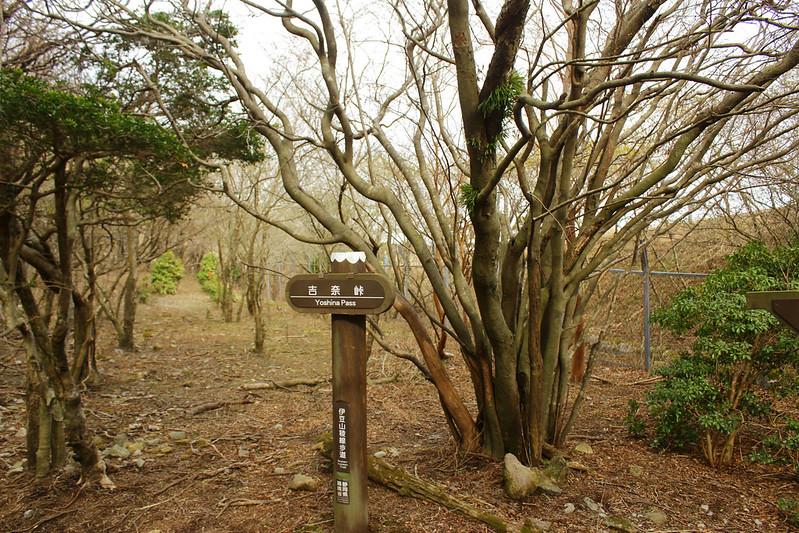 2014-03-31_00402_伊豆稜線トレイル.jpg