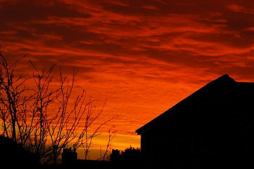 winter sunrise outdoors