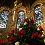 COM_2015_12_Christmas_Flower_Preparation_10