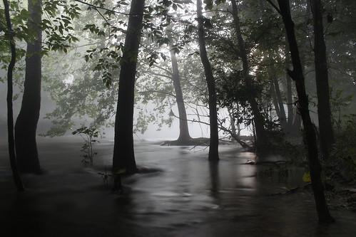 longexposure fog stream morning