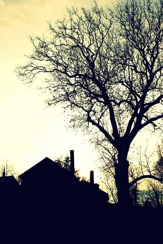 sunset silhouette pennsylvania harrisburg harrisburgpa forthunter