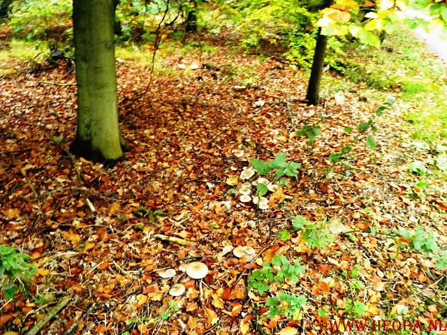 20-10-2012     Wedeblick-   Driebergen        25 Km (10)