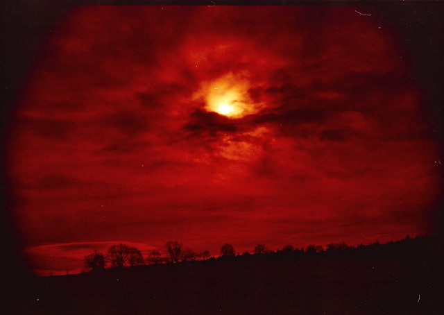 Red landscape film photo
