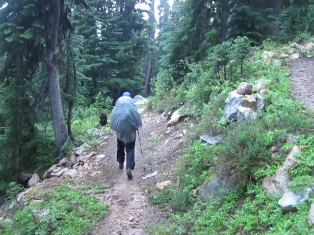 1283 Vicki hiking in the rain on the PCT just north of Methow Pass