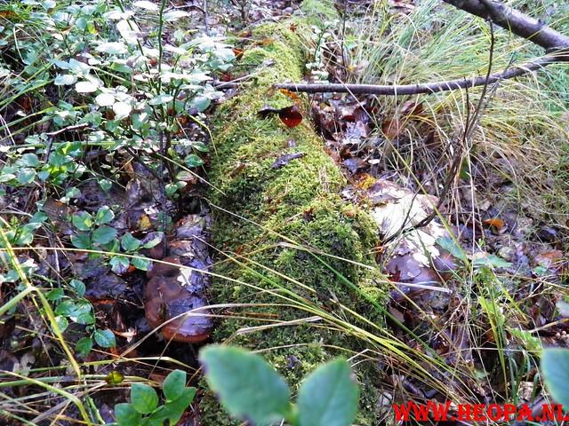 22-10-2011             Driebergen         26 km (70)