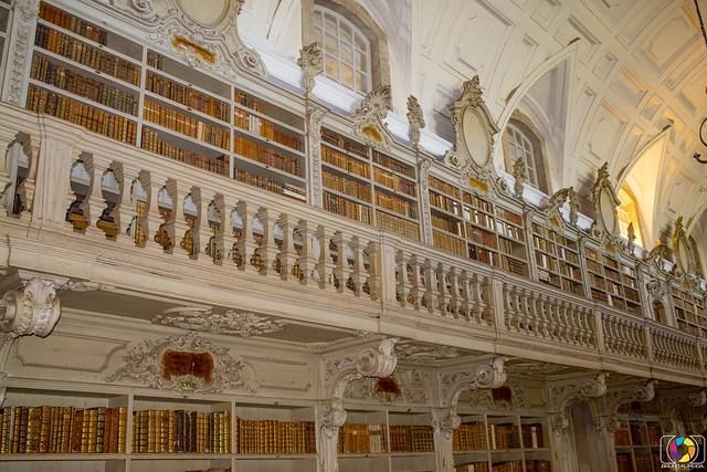 Library Mafra