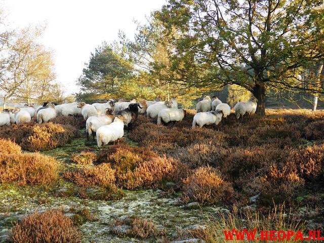 22-10-2011             Driebergen         26 km (24)