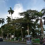 09 Viajefilos en Panama. Bocas del Toro 19