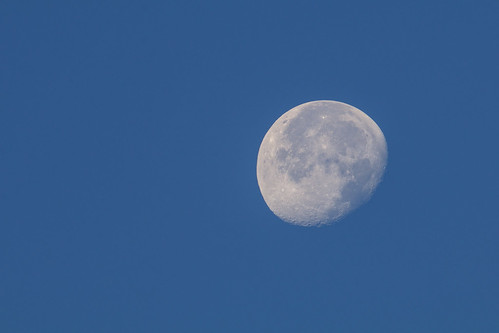 The Morning Moon | by aksoykaan1
