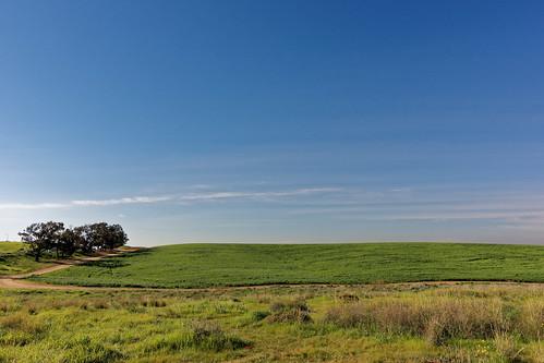 travel blue winter green grass israel sony negev fura tokina1116mmf28 sonya77 furanaturereserve