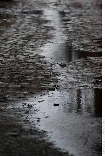 rainy streets   by crystalliora ✦ vesper704