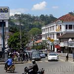 09 Viajefilos en Sri Lanka. Kandy 37