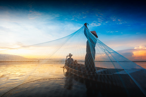8 asia asian balance blue boat burma cambodia entrapment environment farmer fish fisherman fishing food job kayak lake laos lifestyle man mirror myanmar nature net paddle peaceful poor poverty province reflect reflection ripple river sky sunlight sunrise sunset thailand tourism tradition traditional tranquil travel tropical vietnam water weed tambonbangphra changwatchonburi th