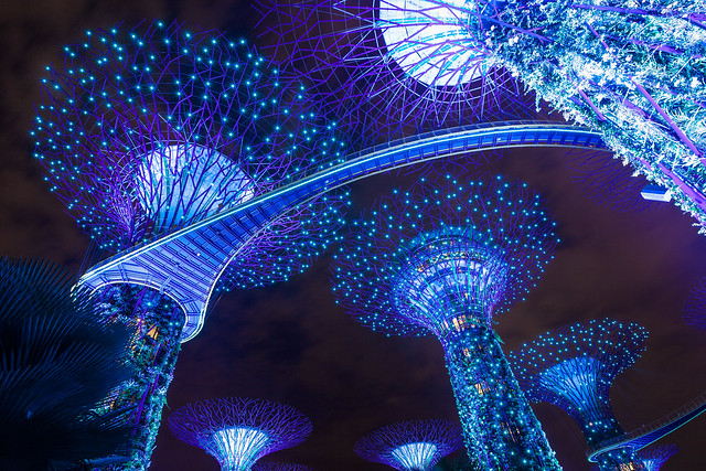 Blue Supertree (Singapore) [Explored]