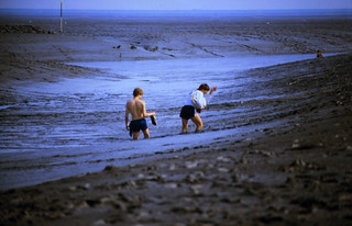 29 Nordsee 1983
