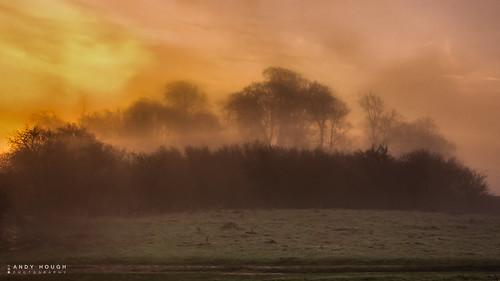 morning trees mist sunrise golden glow sony castlehill goldenhour a77 wittenhamclumps sonyalpha andyhough slta77 andyhoughphotography