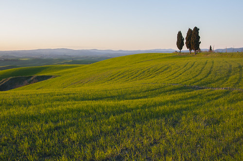 La Toscana | by Guillermo Relaño