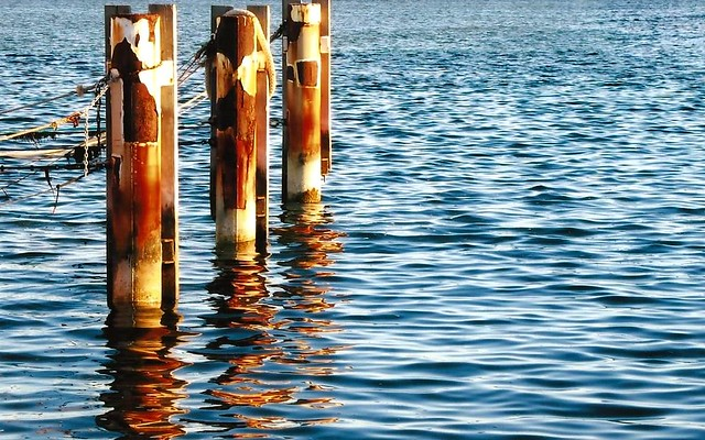 Reflections - Denham Jetty