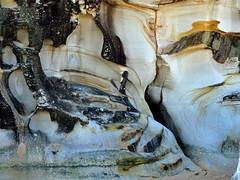 Cliffs at Curl Curl
